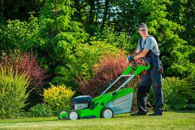 Essential points on Lawn Care and Maintenance